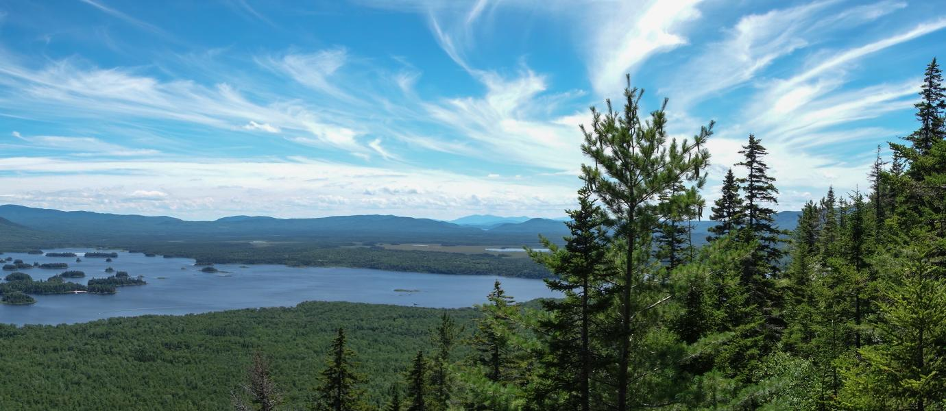 DSL - Designing Sustainable Landscapes