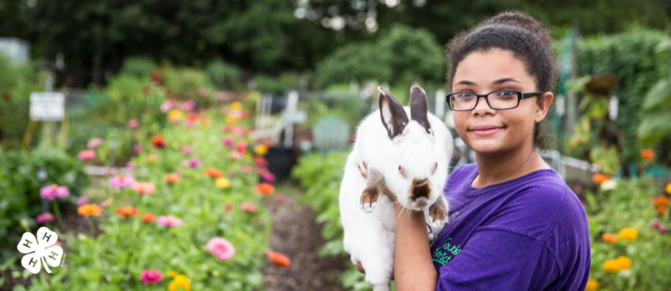4-h girl holding a rabbit