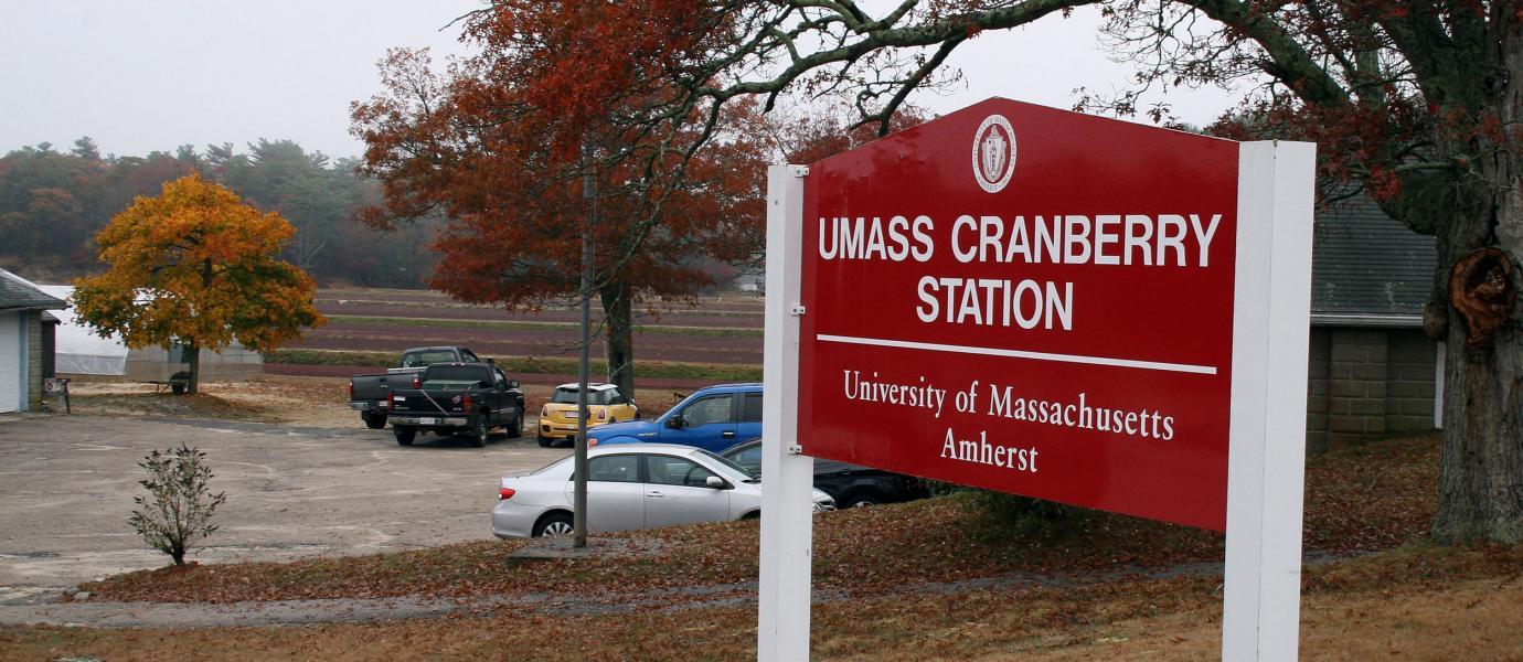 UMass Cranberry Station