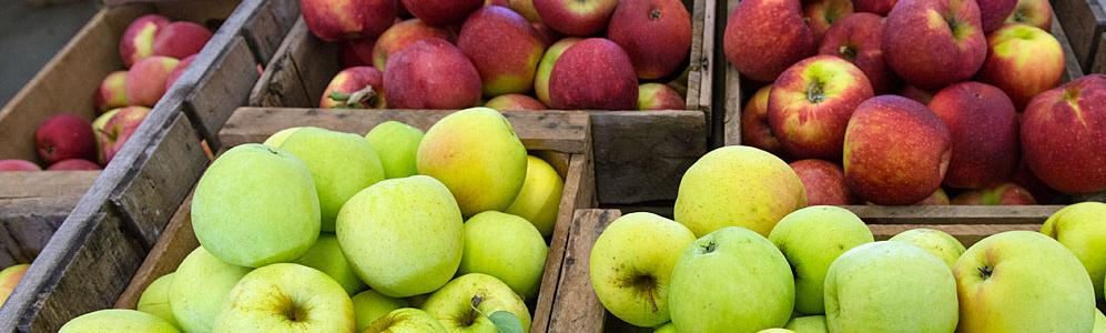 Cold Spring Orchard apples