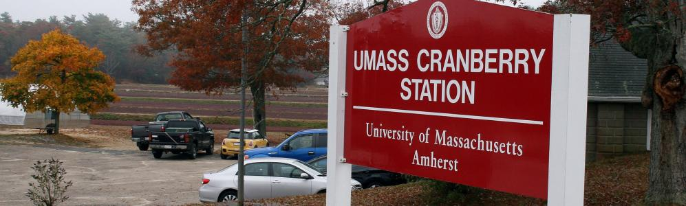 The UMass Cranberry Station