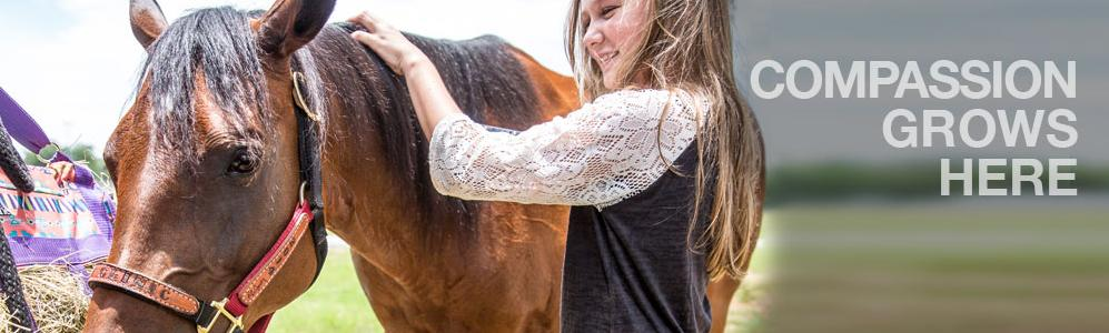 Mass 4-H - girl with horse