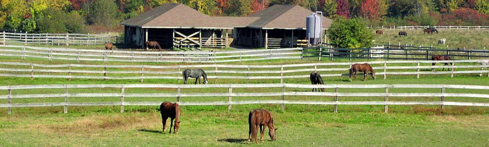 Hadley Equine and Livestock Research and Education Center