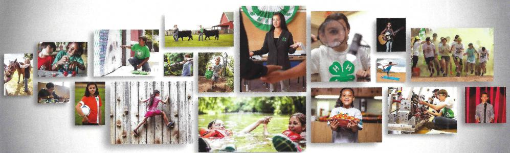 4-H activities photo montage
