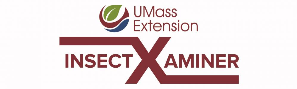 UMass Extensions InsectXaminer