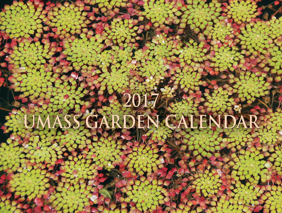 Landscape UMass Extensions Garden Calendar UMass Amherst