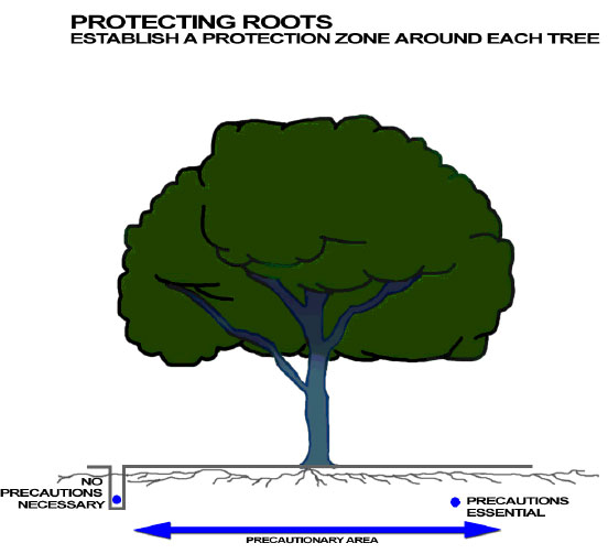 Root zone protection diagram, side view